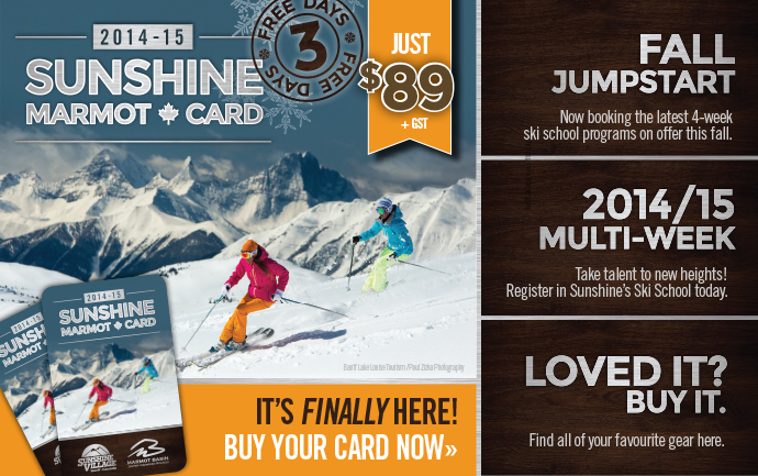 Sunshine Marmot Cards Now On Sale