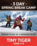 Spring Break 3-Day Camp - Tiny Tigers (3-6)