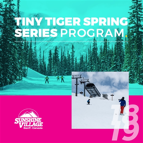 Tiny Tigers Spring Series Program (Ages: 3-6)