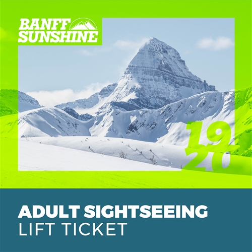 Winter Sightseeing Ticket: Adult (18+)