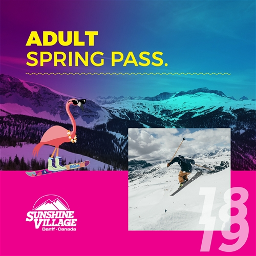 Adult Spring Pass