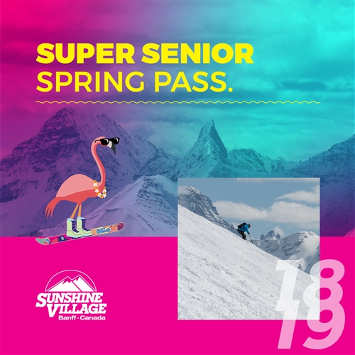 Super Senior Spring Pass