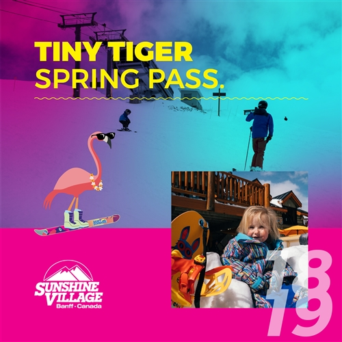 Tiny Tiger Spring Pass