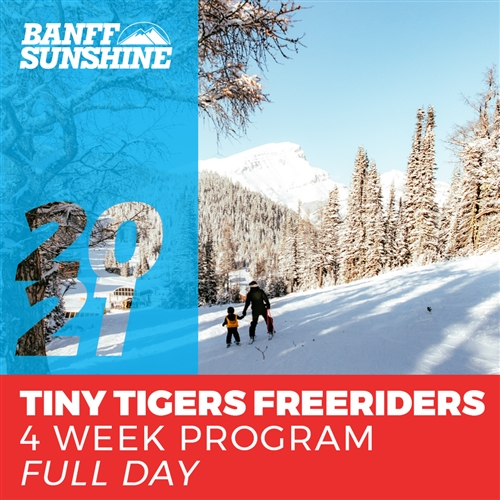 Tiny Tigers Freeriders 4 Week - Full Day